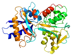 Protein Compound Separated by GFC